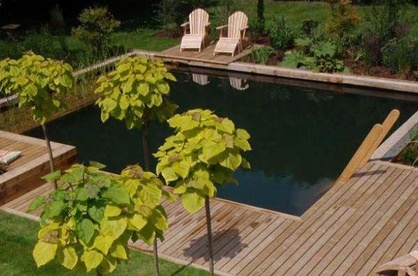 natural swimming pools 10 Enjoying Your Garden this Summer: Natural Swimming Pools Ideas