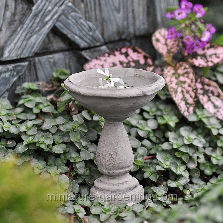 Birdbath Cement · Miniature FairiesMiniature GardensMini GardensCement  PatioConcreteFairy ...