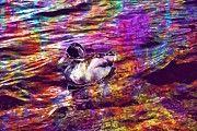 "New artwork for sale! - "" Duck Birds Aquatic Mallard Lake  by PixBreak Art "" - http://ift.tt/2eMa14T"