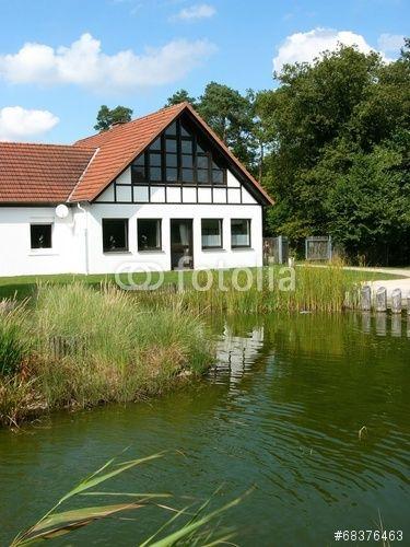 Teich mit Uferschilf an der Ems Erlebniswelt an der Quelle der Ems in Schloß Holte-Stukenbrock in Ostwestfalen