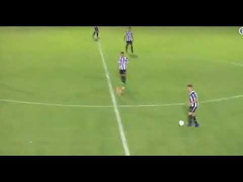 Cachorro faz falta criminosa em jogador no campeonato argentino