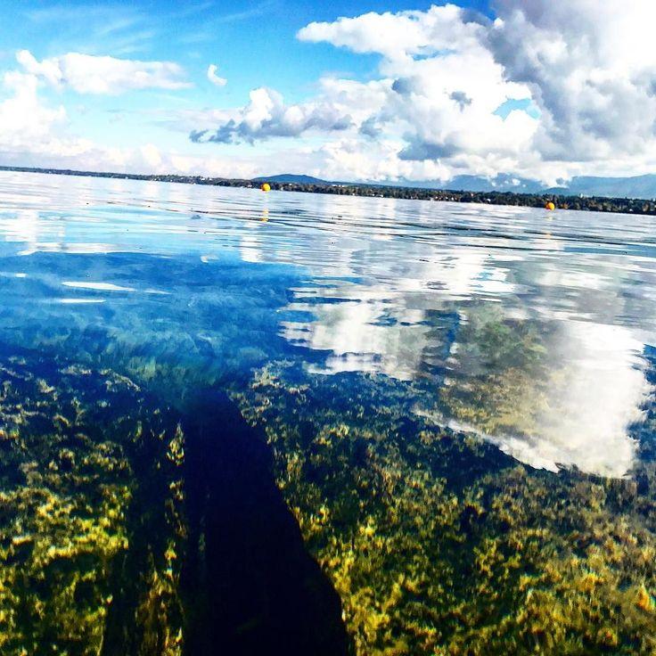 Женевское озеро  для Европы это прямо восьмое чудо света  чистое и очень большое   #этожизнь #осень #новаяжизнь #путешествие #октябрь #2016 #travel #october #traveling #reisen #followme #photoart #швейцария #switzerland #женева #geneve