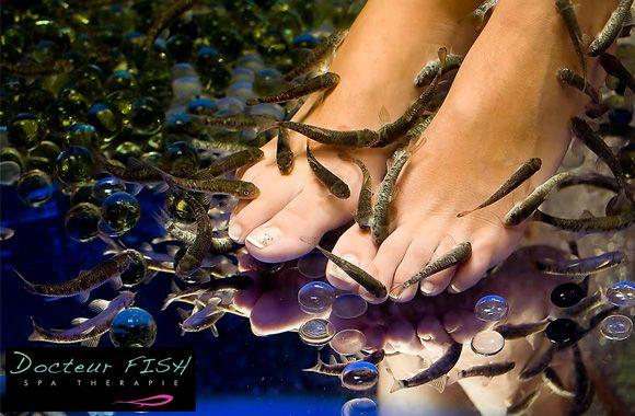 Offre d'achat de groupe: 24$ pour une pédicure-spa poisson exfoliante de 45… – Tuango