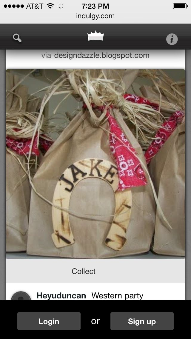 Sheriff Callie bags