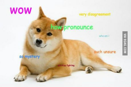 How to pronounce Doge...
