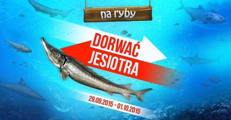 Dorwać Jesiotra w Na Ryby https://grynank.wordpress.com/2015/09/29/dorwac-jesiotra-w-na-ryby/ #gry #nk #naryby