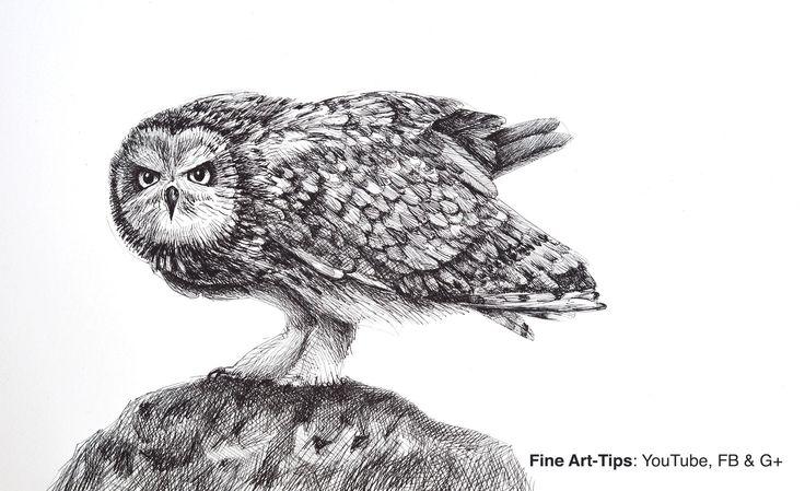 How to Draw an Owl With the Justus 95 Fountain Pen #art #drawing #owl #Finearttips #tutorial #Justus95 #fountainpen #animals #artistleonardo #LeonardoPereznieto  Take a look to my book here: http://www.artistleonardo.com/#!ebooks-english/cswd
