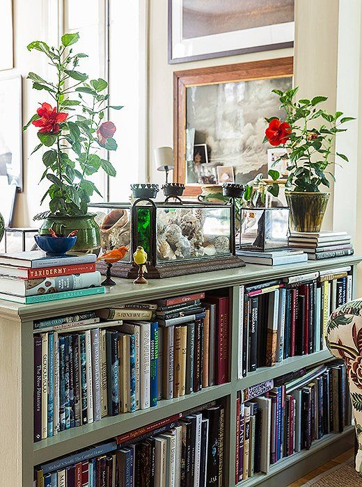 Potted flowers provide a pop of vibrant color to this library corner.