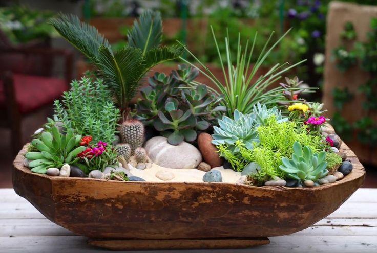 Fått dilla på sukkulenter du også? Trenden sprer seg fort, sukkulenter er jo så fine! Se genial video om hvordan du kan sette sammen din egen dekorasjon.