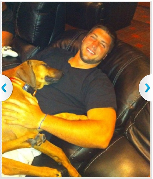 tim tebow and bronx Celebrity dogs, Tim tebow, Dog dad