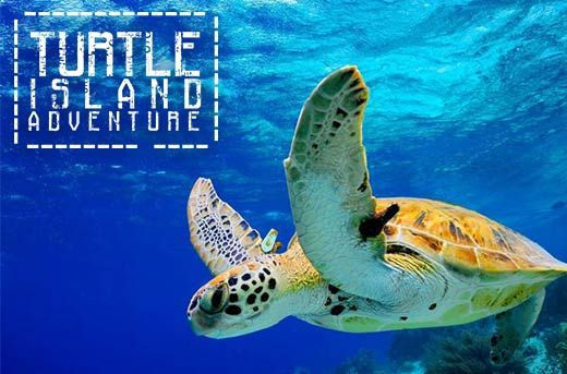 Experience Glass Bottom Boat Trip from Tanjung Benoa to Turtle Island, Bali for Rp259.000 instead of Rp800.000 - Save 68% - Exclusively and only at www.MetroDeal.co.id