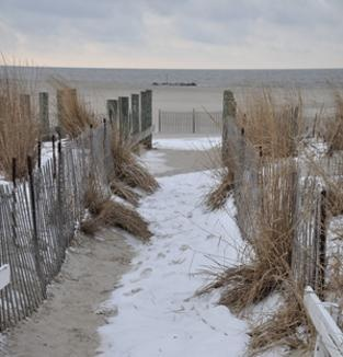 Cape May's Best nice winter pic of the beach..anytime of year is wonderful at cape may, NJ www.capemaysbest.com