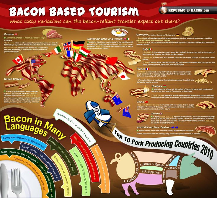 2 of the best things on earth:  travel and bacon.  #winning: Bacon Travel, Bacon Based, Bacon Tourism, Step Stones, Around The World, Travel Food, Infographic, Baconba Tourism, Bacon Bas Tourism