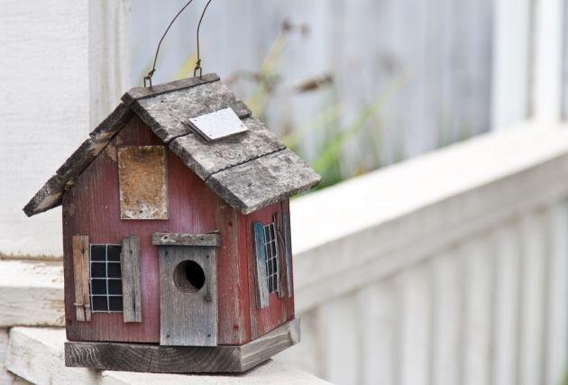 Casas para pájaros ideales para decorar tu jardín.