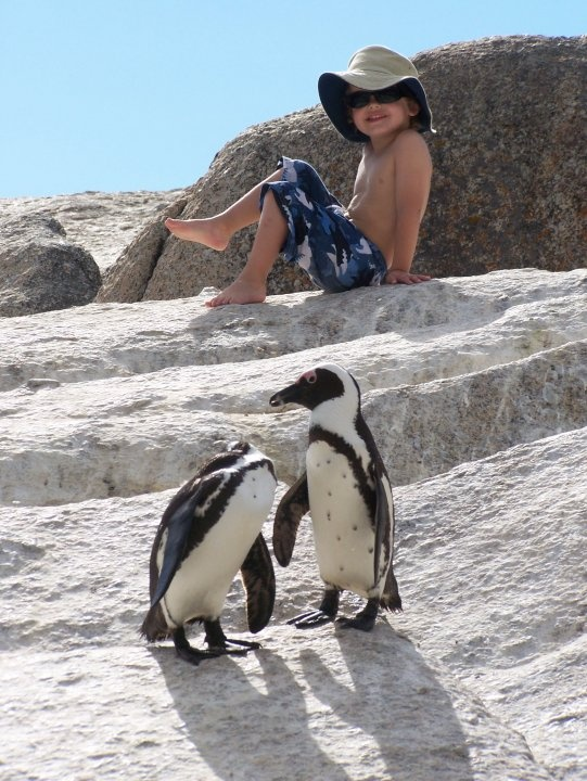 Thing 1 at Boulders Beach, Cape Town
