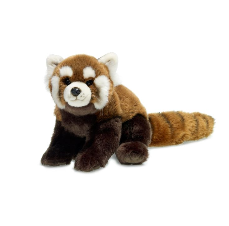 Extrêmement 11 best collection images on Pinterest | Red pandas, Plush and  UL54