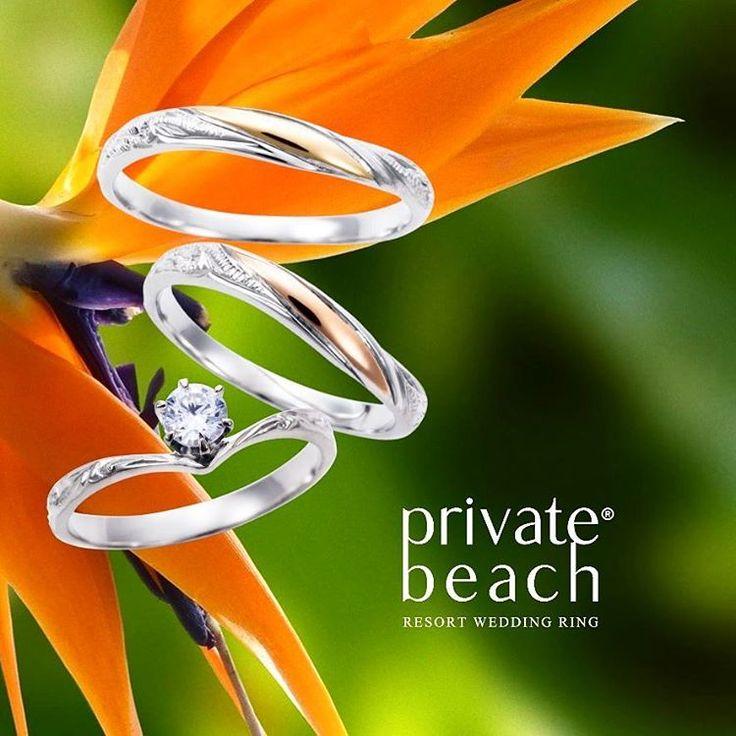 ハワイアンジュエリー リング 結婚指輪 婚約指輪 マリッジリング エンゲージリング エタニティリング ゴールド プラチナ ダイヤ 海 プライベートビーチ 記念日 プレゼント 贈り物 ペアリング ペアジュエリー ウェディング wedding 高崎