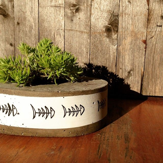 A busy afternoon at Salty Shack HQ prepping for Mother's Day. More of our fish design coming soon! #saltyshack #handmade #concreteplanter #concrete #concretedecor #fish #succulent #sedum #saltylife #mothersday #fishbone