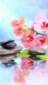 Les 25 meilleures id es de la cat gorie fond ecran zen sur for Fond ecran gratuit zen