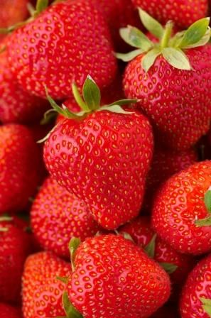 Red Strawberries ~~ For more:  - ✯ http://www.pinterest.com/PinFantasy/flora-~-frutas-y-hortalizas-fruits-and-vegetables/