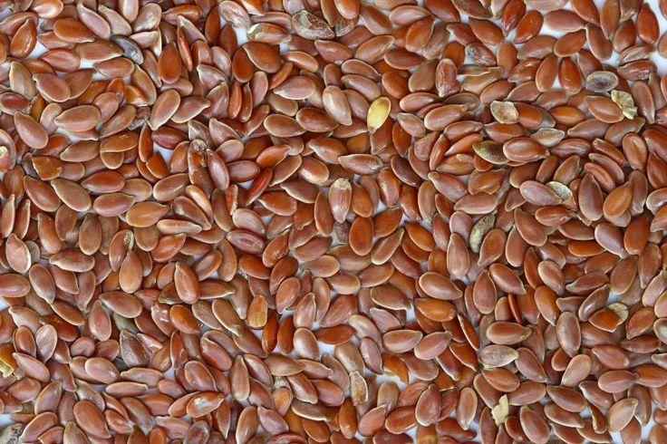 Cómo hacer la prueba de germinación en las semillas - http://www.jardineriaon.com/como-hacer-la-prueba-de-germinacion-en-las-semillas.html
