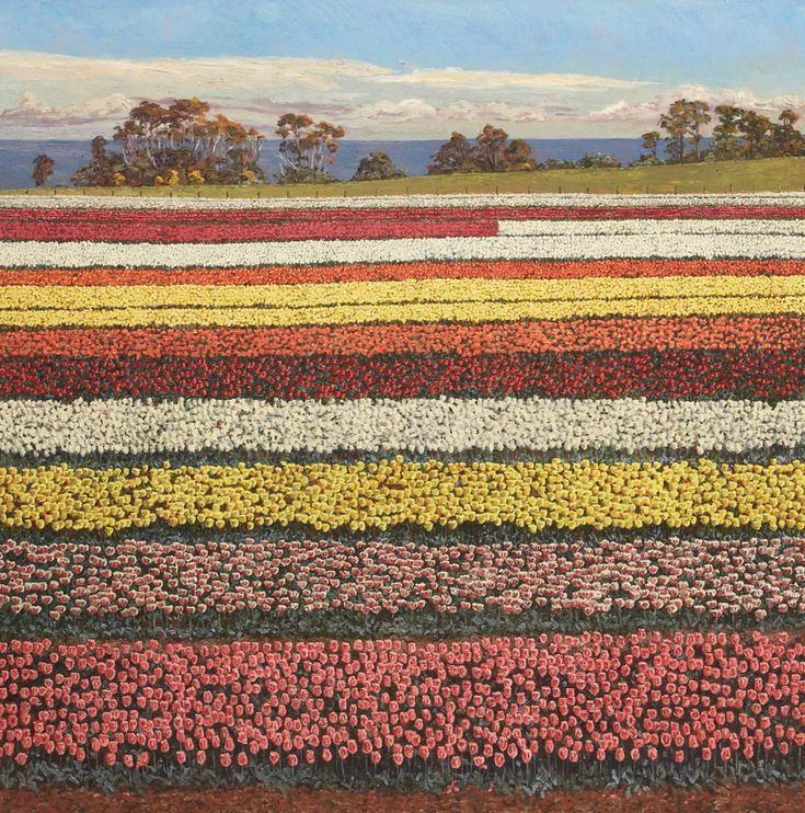 Archibald Prize Wynne 2013 finalist: Table Cape by Lucy Culliton. My painting Table Cape is of the Table Cape Tulip Farm at Wynyard in Tasmania. My last series of paintings were of flowers from my garden. Last September I went to paint the source – the place from where I ordered the bulbs. I made a dozen quick paintings while I was there and I am now busy painting them up. (Australia)