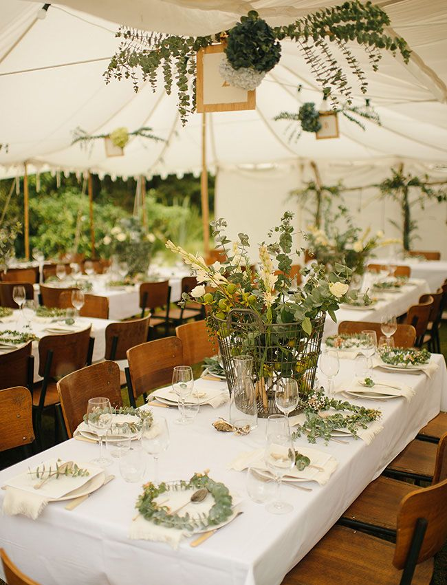 "The type of branches with round, ""dusty"" green leaves, the basket of greenery on the table, simple table setting"