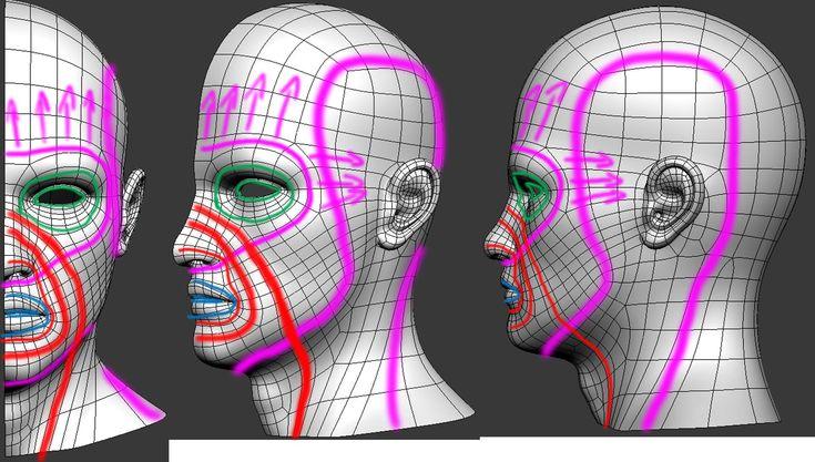 headtopologyflow
