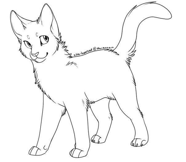 Simple Cat Lineart : Best warrior cat coloring pages images on pinterest