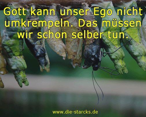 Gott kann unser Ego nicht umkrempeln. Das müssen wir schon selber tun.  www.die-starcks.de