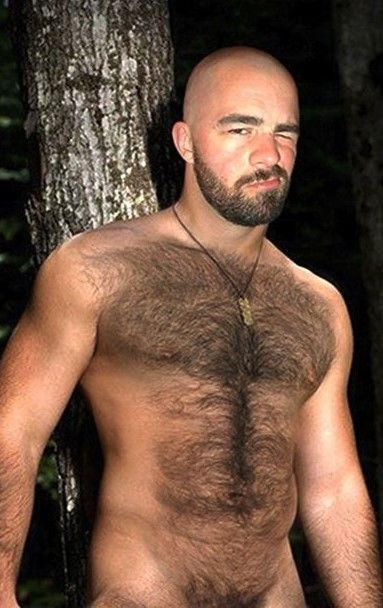 Bald And Hairy 4