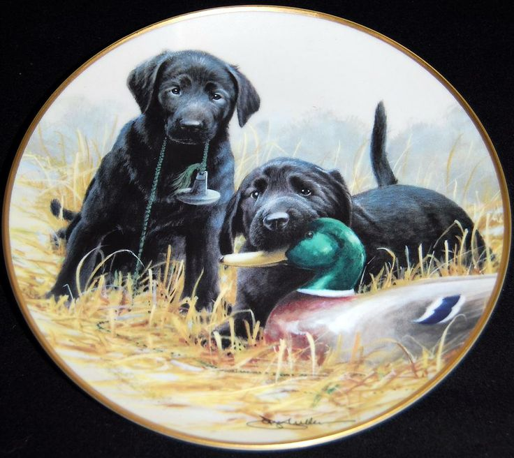 Beginners Luck by James Killen - Franklin Mint Plate