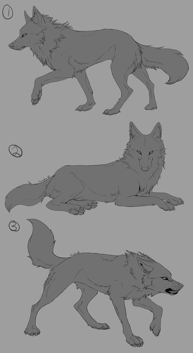 Wolf Linearts By Aviaku A Great Way To Work On Your Drawing Skills