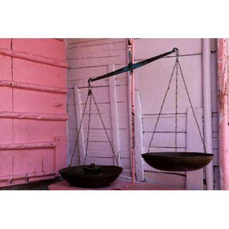 Scales in Pink Canvas Art - Michel Rauscher (20 x 28)