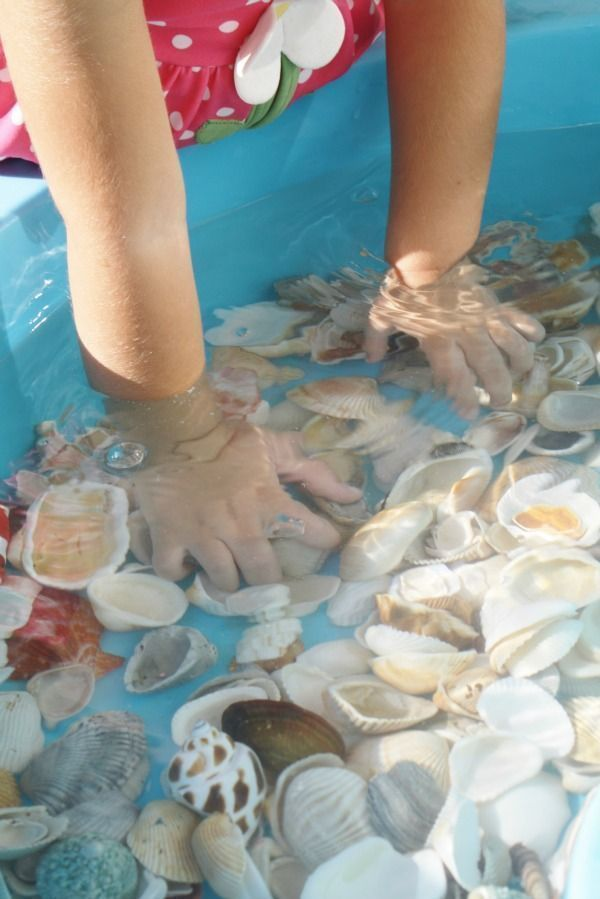 Shells and Water Toddler Play.