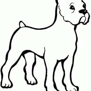 1000+ images about Coloriage animaux on Pinterest | Health ...