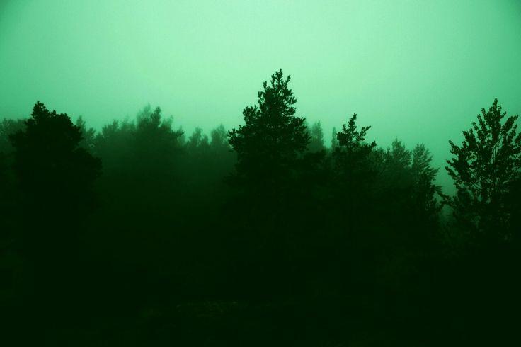 Dark Green Aesthetic Theme Tumblr