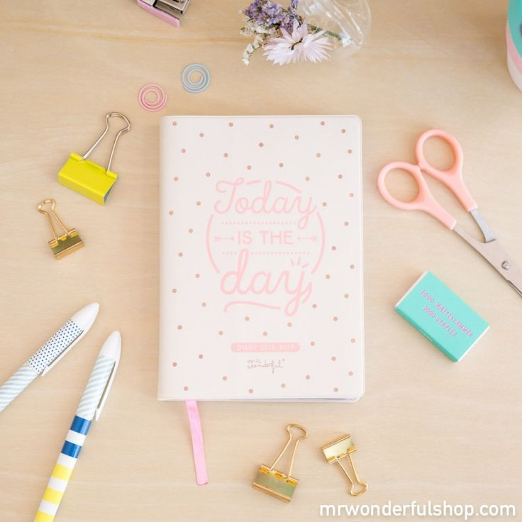 Pocket Diary 2016 - 2017 - Daily - Today is the day (ENG)