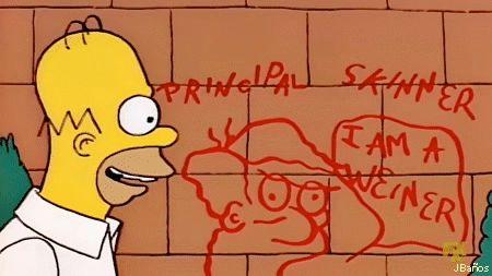 El zopenco de Homer Simpson☺