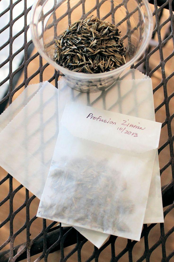 Collecting and Saving Seeds