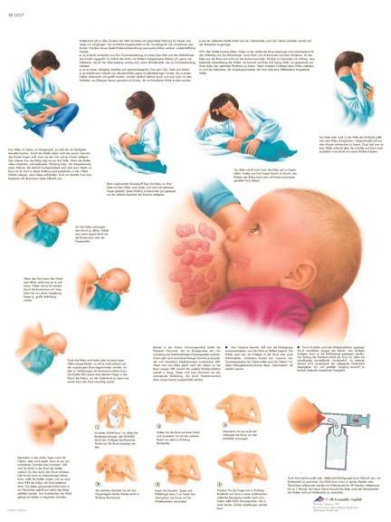 http://www.babysitio.com/ lactancia
