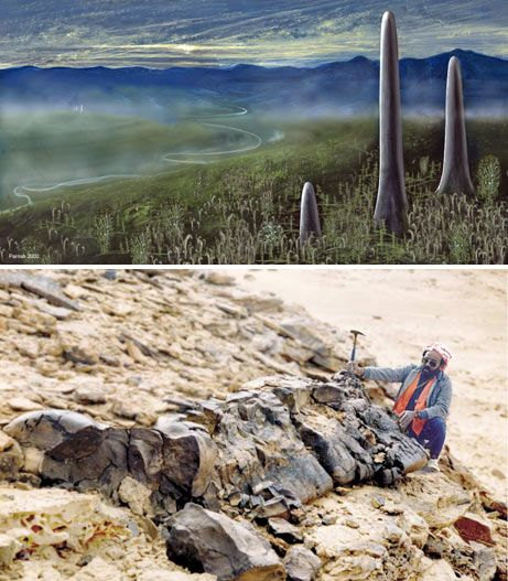 """Long Before Trees Overtook the Land, Earth Was Covered by Giant Mushrooms - 24 feet tall and three feet wide, these giant spires dotted the ancient landscape --- From around 420 to 350 million years ago, when land plants were still the relatively new kids on the evolutionary block and """"the tallest trees stood just a few feet high,"""" giant spires of life poked from the Earth. """"The ancient organism boasted trunks up to 24 feet (8 meters) high and as wide as 3 feet (one meter),"""" said Nat Geo in…"""