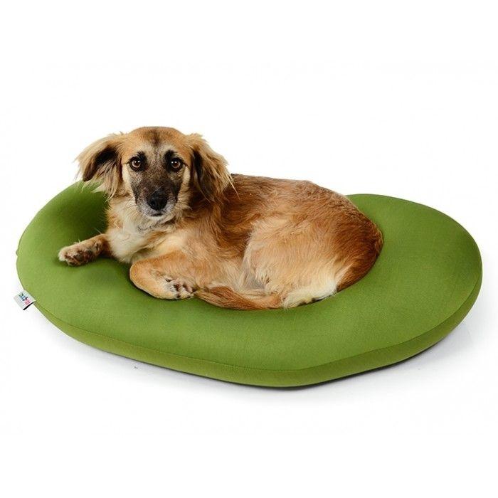 Yogi Doggy   by Milega  https://wexcellent.com/store/Yogi-Doggy-by-Milega