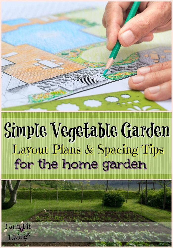 Best 25 vegetable garden layouts ideas on pinterest for Basic vegetable garden layout