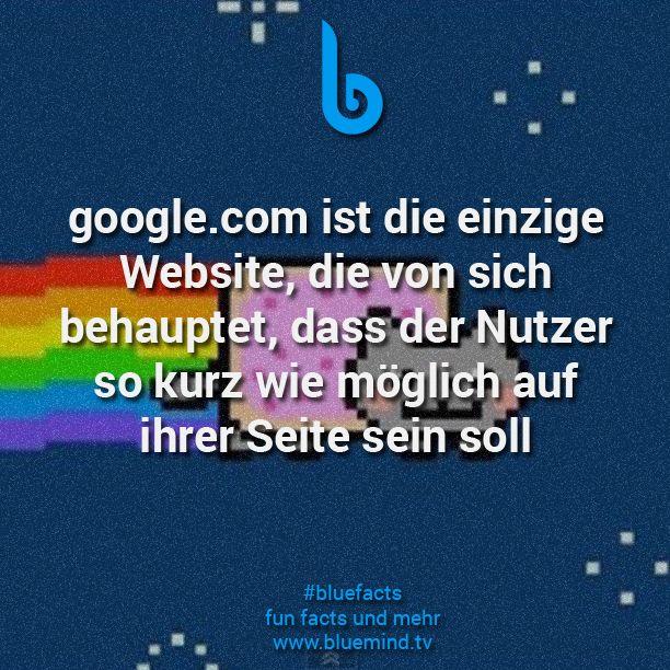 15 Fakten über Google | Bluefacts | Facts und Life hacks