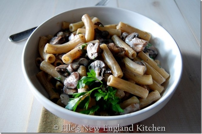 Creamy Mushroom Rigatoni - from Elle's New England Kitchen - great site!