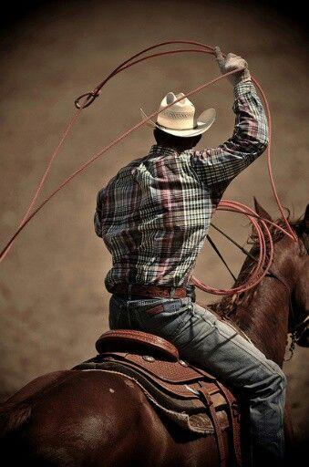 *A working cowboy