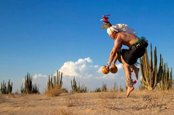 """La Danza del Venado:"" David H. Sinaloa."