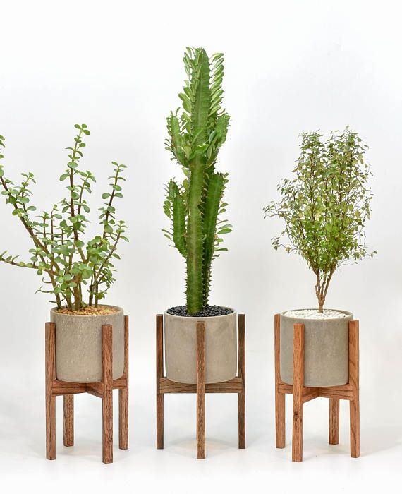 Small Mid Century Modern Plant Stand With Cement Pot Indoor Plant Stand With Concrete Pot Modern Planter Stand With Cement Pot Modern Plant Stand Mid Century Modern Plant Stand Plant