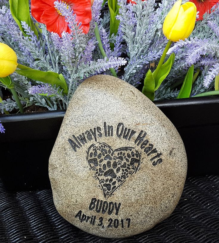 God Rocks Always In Our Hearts Engraved Pet Memorial Garden Stone. God Rocks Always In Our Hearts Pet Memorials are the perfect way to pay honor to the pets you have loved. Pets are beloved family member and the loss of our beloved pets can be devastating. These personalized rocks can serve as a pet memorial marker or pet grave marker. They also make the perfect garden pet memorial among your flowers. The dog or cat memorial stone is engraved with your pet's name and a paw print. We…